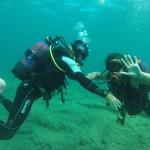 Primeiro Mergulho da Priscila